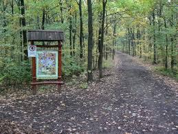 Széchenyi  Parkwald  und  Ökotourismuszentrum, Bagolyvár Vadaspark (Wildpark Eulenburg )