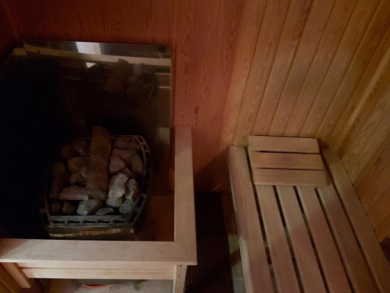 poate fi saună în varicoză)